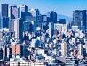 日本リスク管理学会 保健医療研究部会